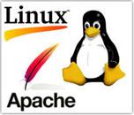 Веб сервер и платформа